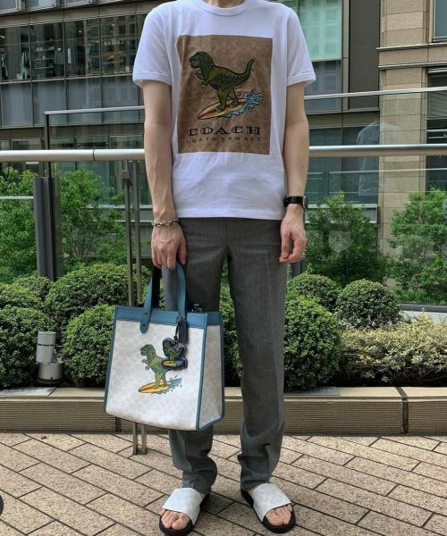 COACH / コーチ Tシャツ   【日本限定】シグネチャー サーフ レキシー Tシャツ   詳細7