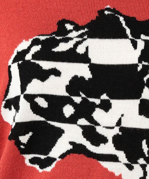 EVEX by KRIZIA / エヴェックス バイ クリツィア その他トップス   【ウォッシャブル】チーターボーダーインターシャニット   詳細9