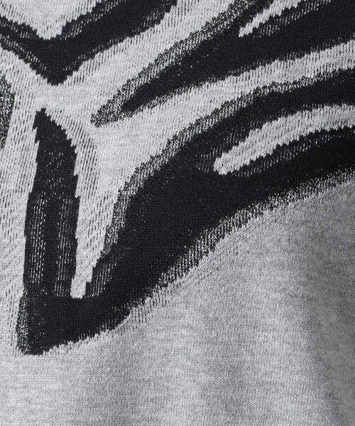EVEX by KRIZIA / エヴェックス バイ クリツィア カットソー   【ウォッシャブル】シャイニーゼブラジャカードカットソー   詳細14