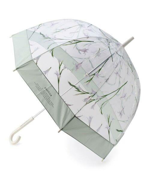 grove / グローブ 傘 | Wpc.フラワービニール傘(長傘)(ライトグリーン(821))
