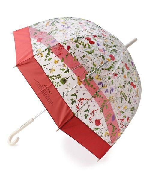 grove / グローブ 傘 | Wpc.フラワービニール傘(長傘)(レッド(862))