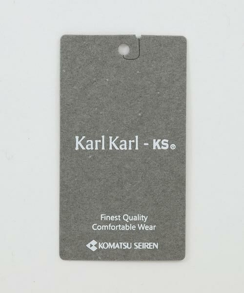 INED / イネド ミニ・ひざ丈スカート   ロングタイトスカート《Karl Karl》   詳細17