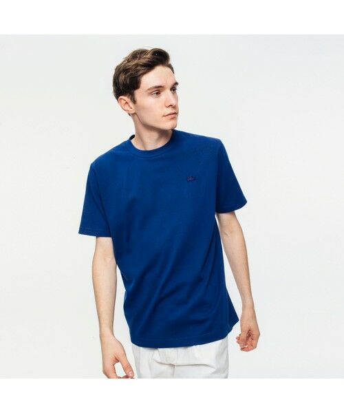 LACOSTE / ラコステ Tシャツ | ボディーサイズピグメントTシャツ(ネイビー)