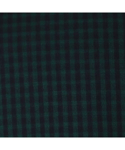 PISANO / ピサーノ カットソー | [大きいサイズ/L-3L]ギンガムチェック・スタンドカラープルオーバー | 詳細12