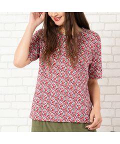 """<b>◆手洗いOK/大きいサイズ/L-LL◆<br><font color='#ff3366'>■人気のリバティプリントシリーズに、大人可愛いTシャツが登場■</font></b><br><br>ご好評いただいているリバティ×ピサーノのコラボ。<br>着心地抜群のコットンTシャツが登場です!<br>リバティプリントの柄から、可愛らしい花柄を2柄チョイスしました。<br>ストレッチ性抜群でラクちんな履き心地なので、おうちファッションにもオススメです。<br><br>・柄をいかしたシンプルなクルーネックデザイン<br>・後ろ丈が長くなっているので、気になるヒップをさりげなくカバー<br>・二の腕をカバーする、長めの袖丈もうれしいですね<br><br><b>◆ベージュ<Maria>(マリア)</b><br><b>◆レッド<Bstsy Ann>(ベッツィ・アン)</b><br>いわずと知れたリバティの人気柄「マリア」と「ベッツィ」の縮小版をセレクト。<br>華やかなカラーですが、小さめの柄なので大人の女性も着こなしやすい一枚になっています。<br><br><b><font color='#ff3366'>■リバティプリント</font></b><br>イギリスの老舗生地ブランド""""リバティ社""""のデザインした国産生地を使用。<br>リバティプリントのモチーフの代表は多彩な花のパターン。<br>リバティプリントならではの華やかな柄が、コーディネートに存在感を与えてくれます。<br>ボリュームスリーブブラウス[品番:56032005]<br>ロングブラウス[品番:56032006]<br>シャツブラウス[品番:56032013]<br>ロングシャツワンピース[品番:56012004]<br><br><b>◆コーディネート商品</b><br>サイドプリーツフレアパンツ[品番:56053001]<br>カーキワイドパンツ[品番:56052005]<br>[モデル身長:173センチ]<br><br><b><font color='#ff3366'>■商品特性■</font></b><br>透け感: なし<br>生地感: やや薄手<br>伸縮性: あり<br>光沢感: なし<br><br>襟ぐり: クルーネック<br>裏 地: なし<br>袖 丈: 5分丈<br>かぶりタイプ<br><br><b><font color='#ff3366'>■洗濯表示■</font></b><br>手洗い可=取り扱いについては、商品についている洗濯表示でご確認ください。<br><br><b><font color='#ff3366'>■PISANO BrandConcept■</font></b><br>トレンドに敏感でありながら、柔らかく優美なデザインで'かしこまりすぎず、飾りすぎない'どこか余裕のある大人の女性らしさを追い求めるブランドです。<br>◆Lサイズ/LLサイズ(13~17)号展開<br>◆3Lサイズ(19~21号)は一部商品限定展開<br><br>※モデル画像はサンプルを使用している為、実際にお届けする商品と仕様が若干異なる場合がございます。<BR>"""
