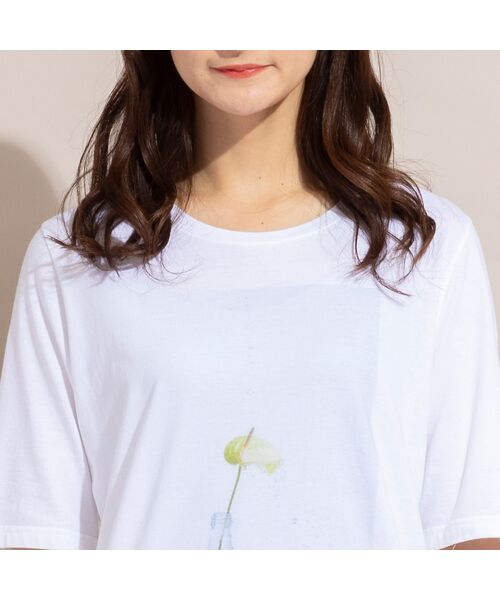 PISANO / ピサーノ カットソー | 【ボタニカルフォト】ナチュラルソフトコットンTシャツ | 詳細8