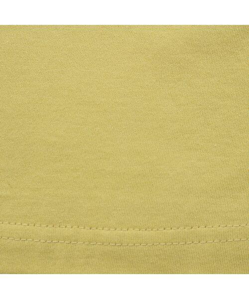 PISANO / ピサーノ カットソー | 【ボタニカルフォト】ナチュラルソフトコットンTシャツ | 詳細17