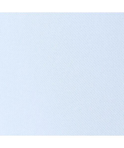 Rose Tiara / ローズティアラ ミニ丈・ひざ丈ワンピース   リボンフラワーモチーフ襟付きワンピース   詳細13