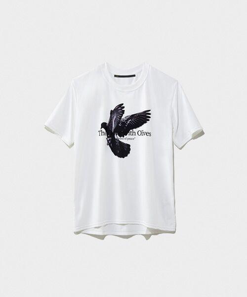 STYLE & EDIT / スタイル&エディット Tシャツ   Tシャツ(WHITE)