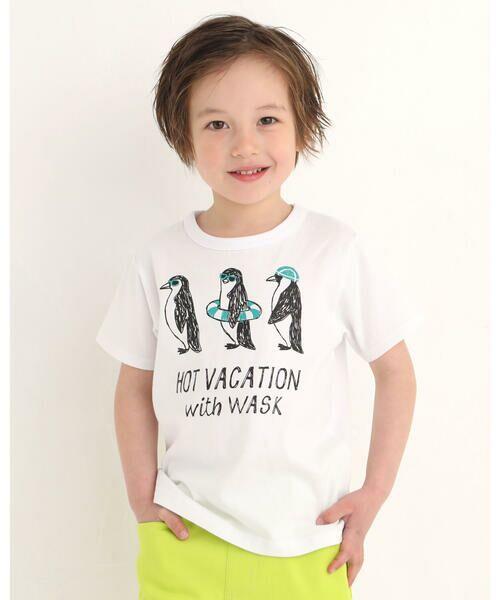 WASK / ワスク Tシャツ   アニマル 天竺 Tシャツ (100~160cm)(グリーン)