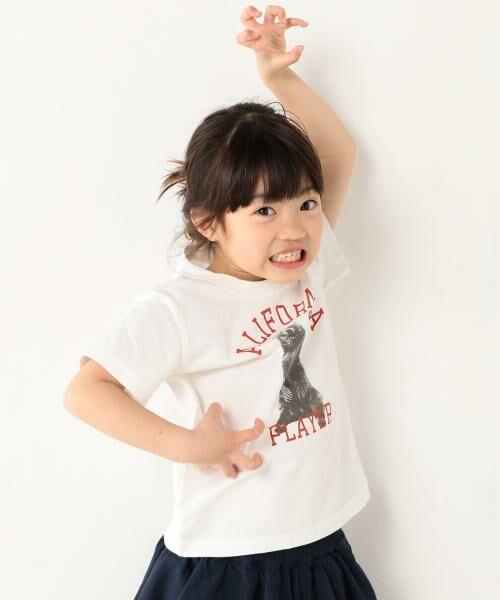 coen / コーエン ベビー・キッズウエア | 【coen キッズ / ジュニア】PARKIES(パーキーズ)クマフォトプリントTシャツ(100~150cm)(ホワイト)